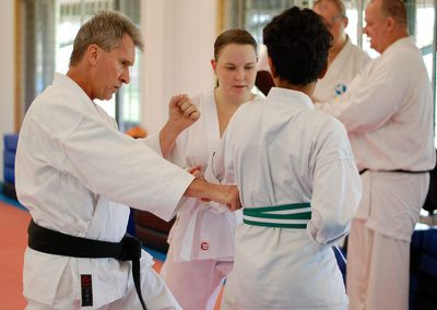 Sensei demonstrating techniques during class