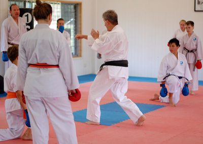 Sensei demonstrating techniques during kumite class