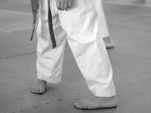 Footwork & Stances