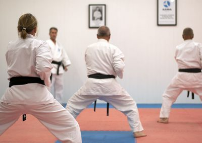 Kihon techniques during training