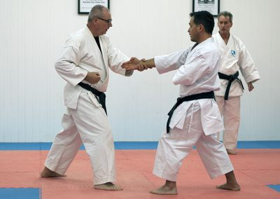 Bunkai is usually performed with a partner or a group of partners which execute predefined attacks